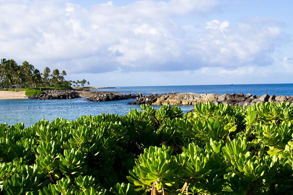 Beach at Ko'olina