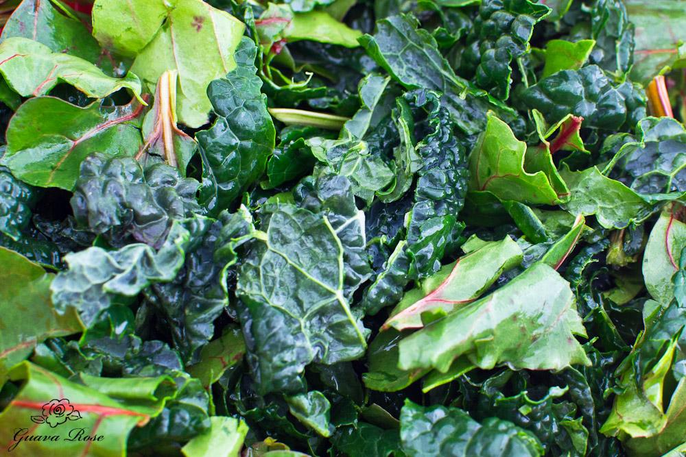 Kale and beet greens, close up
