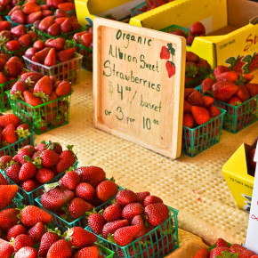 Sacramento Midtown Farmers Market