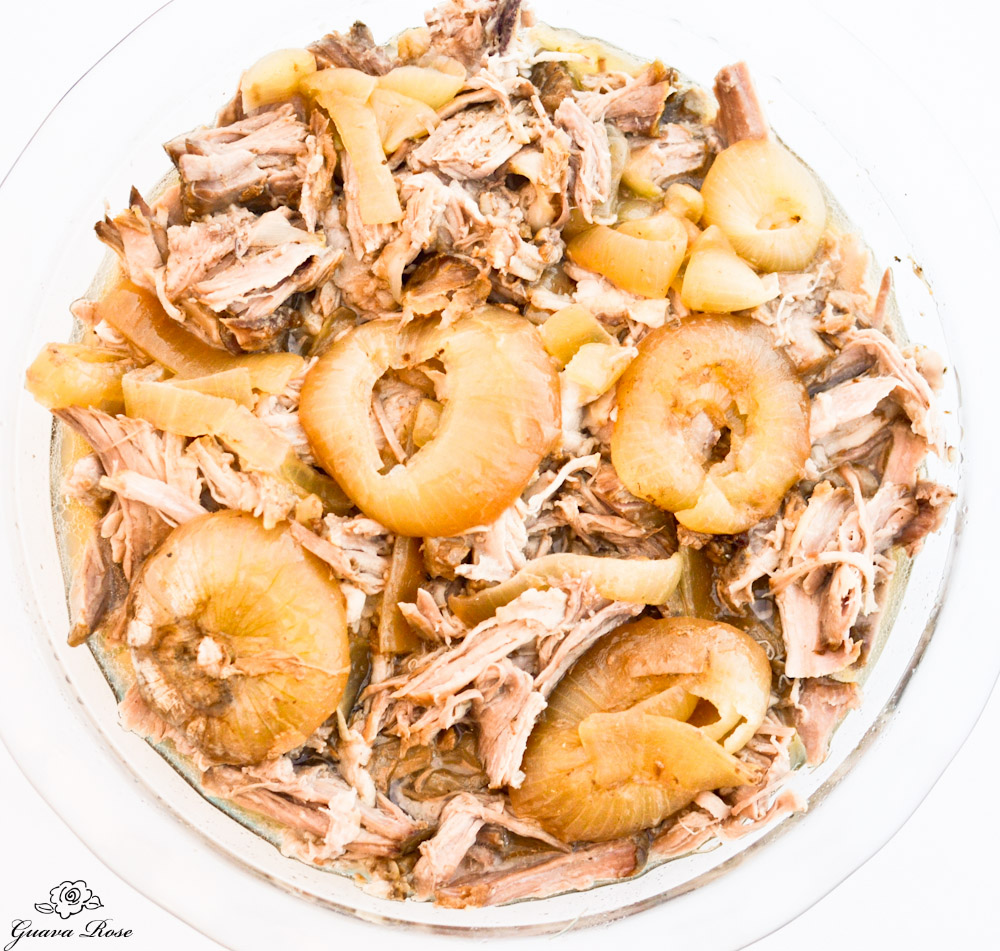 Kalua Pig and onions, top view